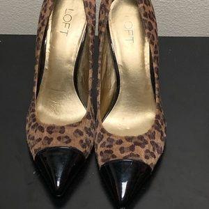 Leopard print pumps with Patient leather
